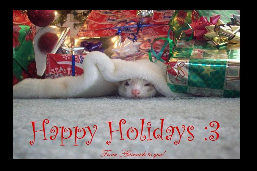 Christmas Ferret.The Christmas Ferret By Animash On Deviantart