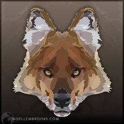Dhole by NoelleMBrooks