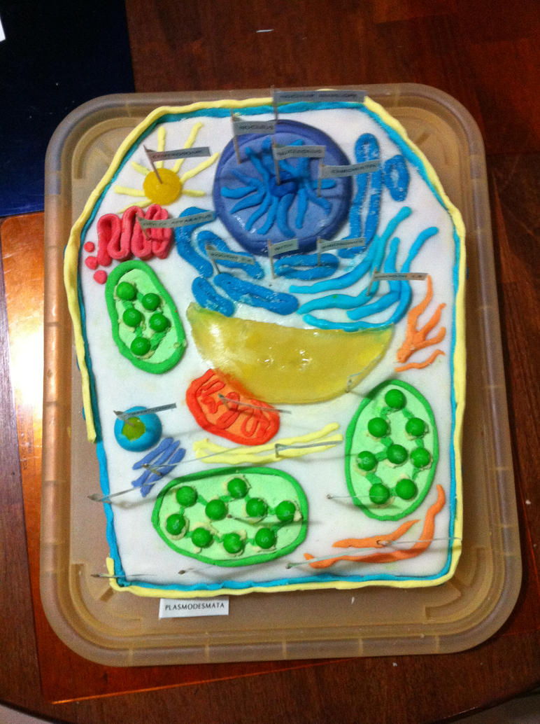 Plant Cell Cake By Tofu Survivor