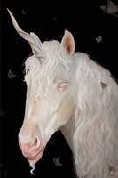 The Unicorn by TobyFoxArt