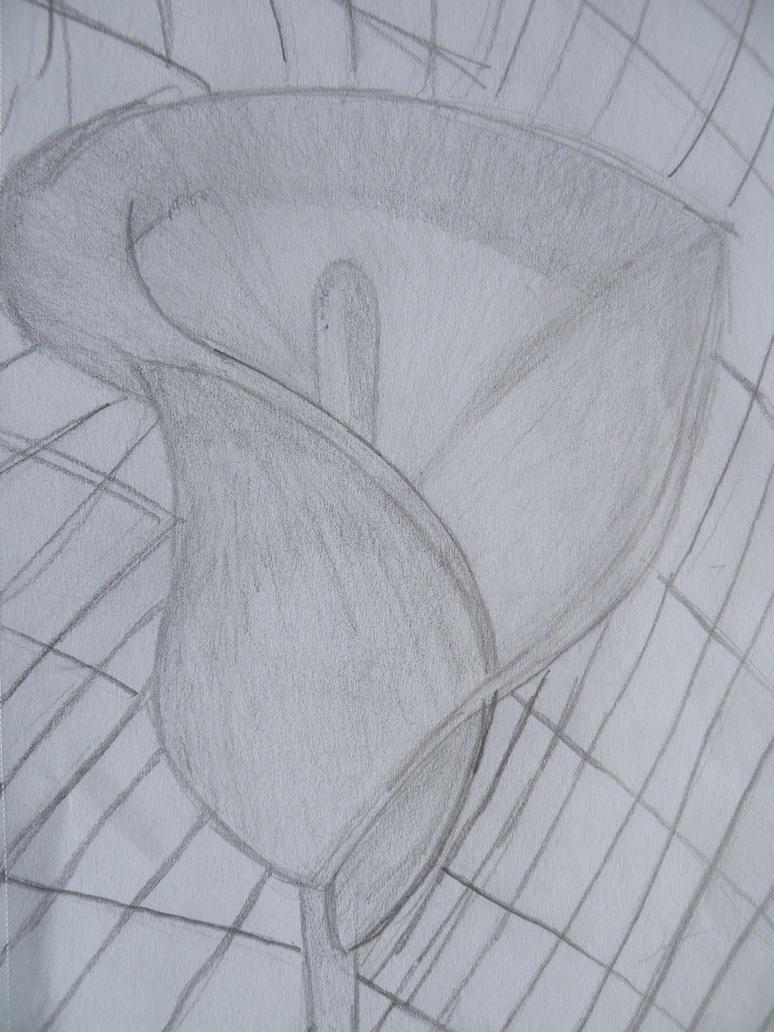 Raindrop Pencil Drawing Raindrop Pencil Drawing