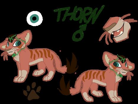Thorn ref (com)