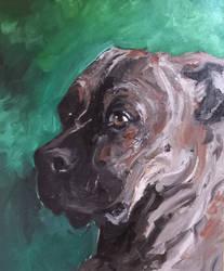 Milo The pup