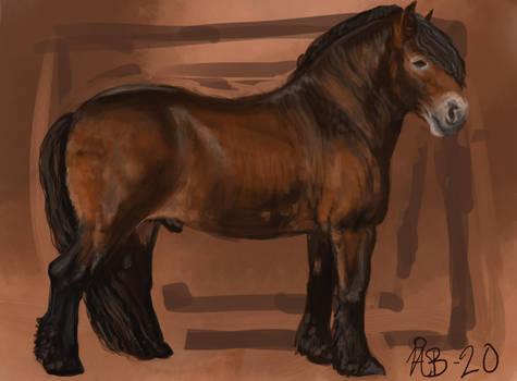 Drafthorse.