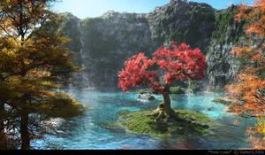 Tree Cove