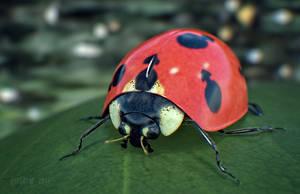 Gentlemanbug by Hypertaf-Tafkah