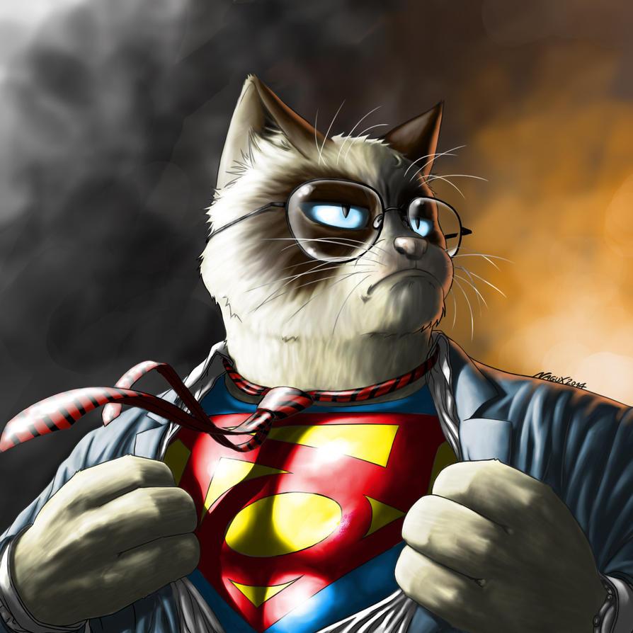 http://pre04.deviantart.net/0caf/th/pre/i/2014/285/f/3/grumpy_cat___super_no_by_nagux-d82ix99.jpg