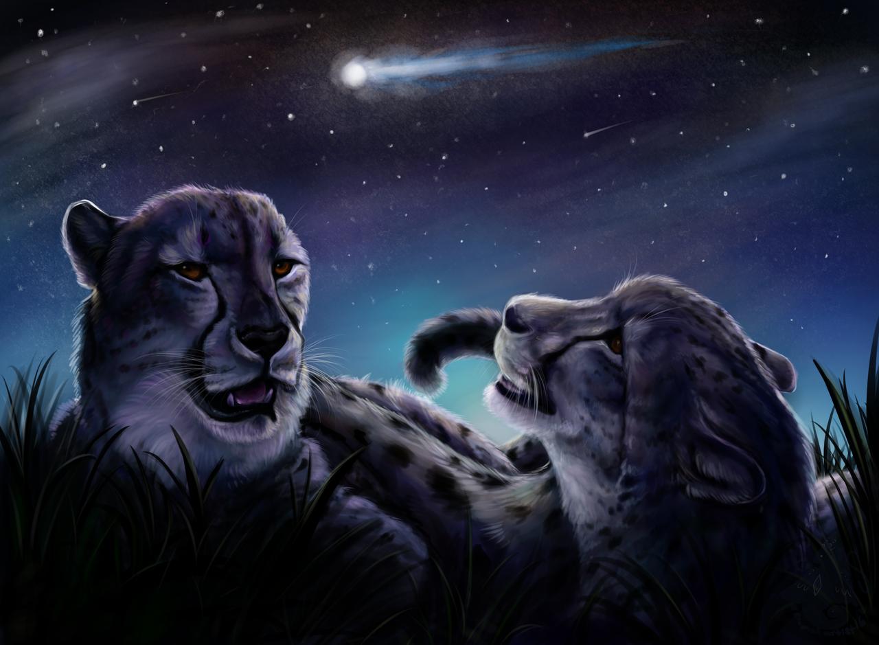 Meteor Shower by animalartist16