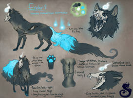 Ender Reference by Kasaurus