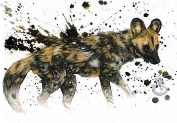 Paint Splatter by Kasaurus