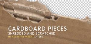 2 Hi-Res Cardboard Pieces