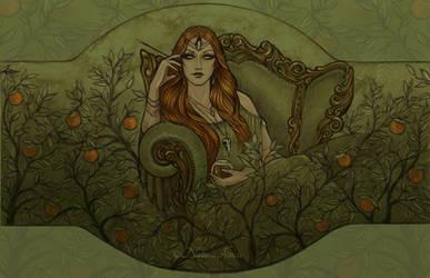 Blood Orange by NatasaIlincic