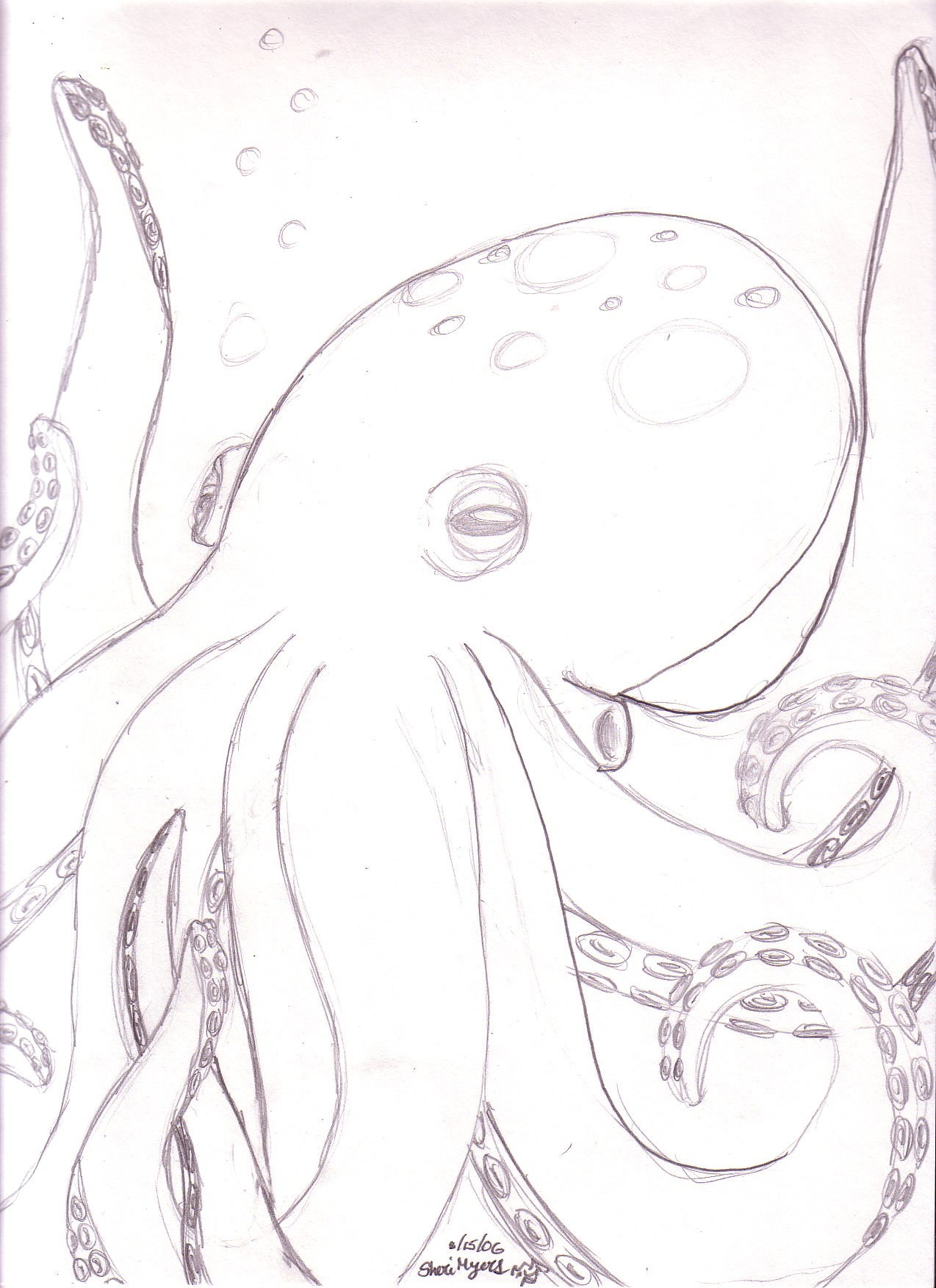Octopus - W.I.P. by SpookyDragon02
