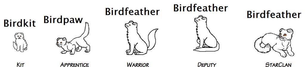 Birdfeather Oc by makerofmuch