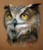 Horned Owl by SkwidVishus