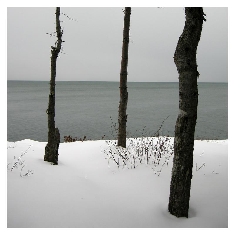 three trees by Izaaaaa