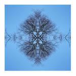 Snowflake by Izaaaaa