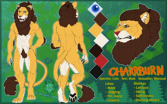 [C] Lion Reference Sheet