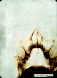 maoid5 lobotomy by markomao
