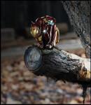 Ironsquirrel by Santiago-Perez