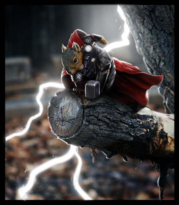 Squirrel Thor