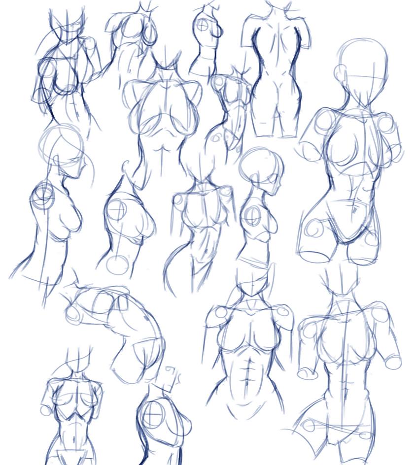 female_torso_practice_by_justingreeneart
