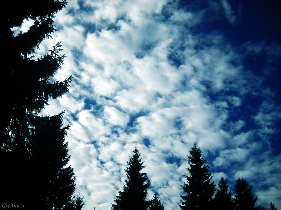 Autumn sky by xAnnca
