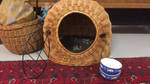 Bowls and transport cage/sleeping cave for Phoenix