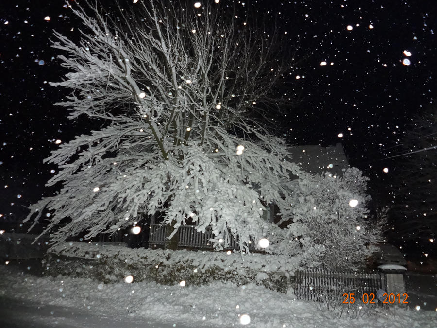 SNOW! by Kyoshyu