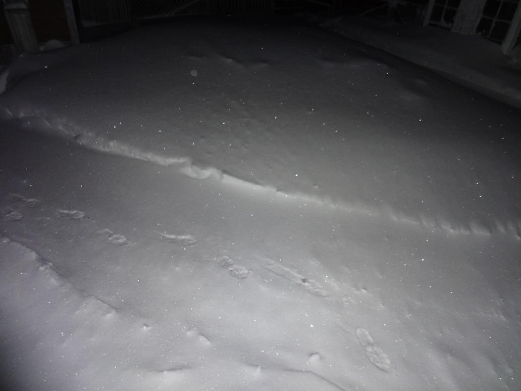 Sparkly Crystalline Snow (2) by Kyoshyu