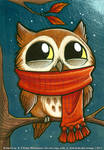 Tiny owl is PLEASED with scarf