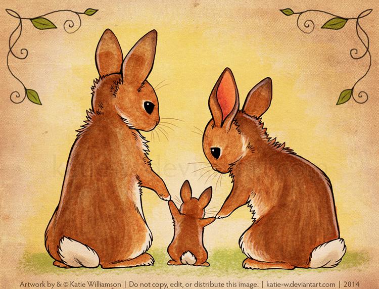 Рисунки и видео кролика