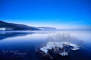 The beauty in cold. by eriksimonic