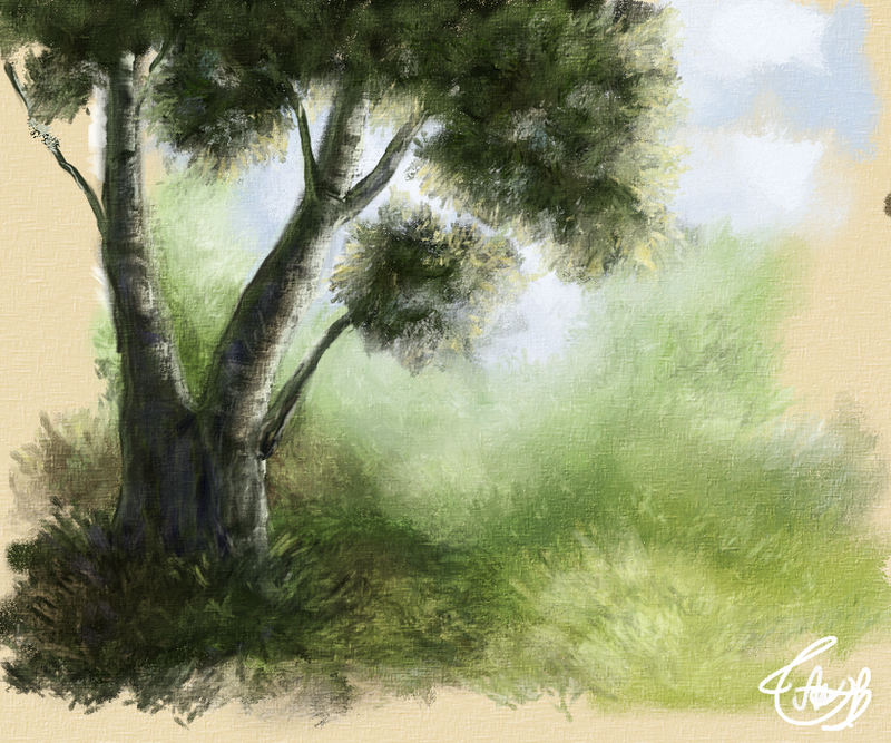 Tree studio by vssertse