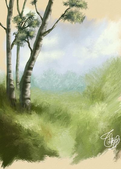Trees studio by vssertse