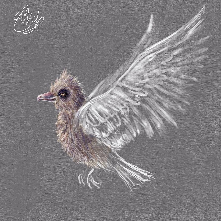 Imaginary Bird by vssertse
