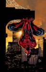 Amazing Spider-Man Family