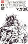 Wolverine Hero Initiative 2