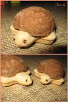 Tortoise Cookies by escariel