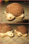 Tortoise Cookies