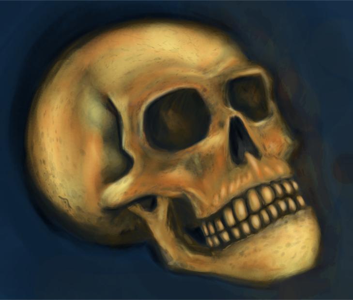 Skull Study by ViciousZen