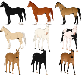 Thoroughbred Adoptables by jetblackpatriot