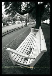 I sit and I wait... by SawSomething