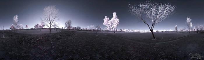Park Infrared Panorama by calanjackal