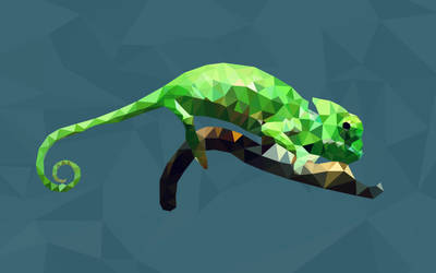 POLYGON CHAMELEON by polygn