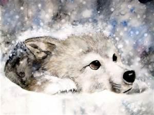 Pt by wolfspirit158