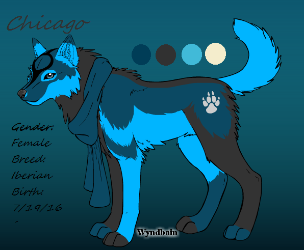 Chicago by wolfspirit158