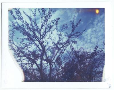 Polaroid68 by firstkissfeelings