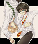 Draco and Harry - Prize pic