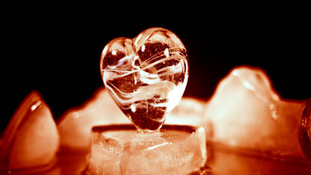 Frozen Heart .. Still Burning by D250Laboratories